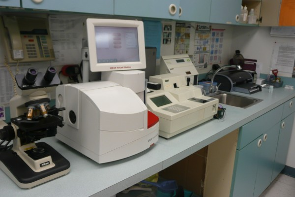 We have an in house lab, which allows us to have results for most patients withing minutes.