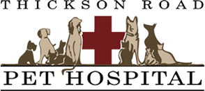 Thickson Road Pet Hospital